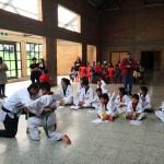 Cursos Taekwondo niños Salitre Bogotá